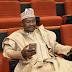 The enemies of your govt are within, APC senator Isa Misau tells Buhari