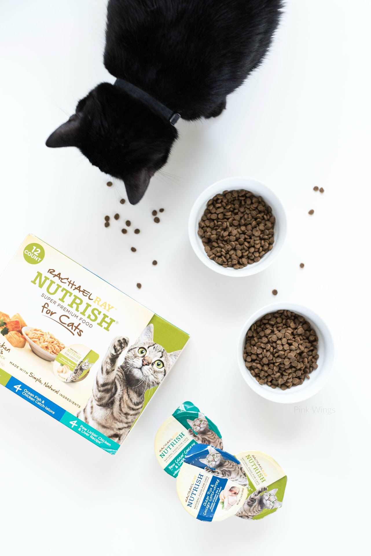 cat eating food, best cat food, best dry cat food, healthy cat food, premium, is premium cat food worth the money,