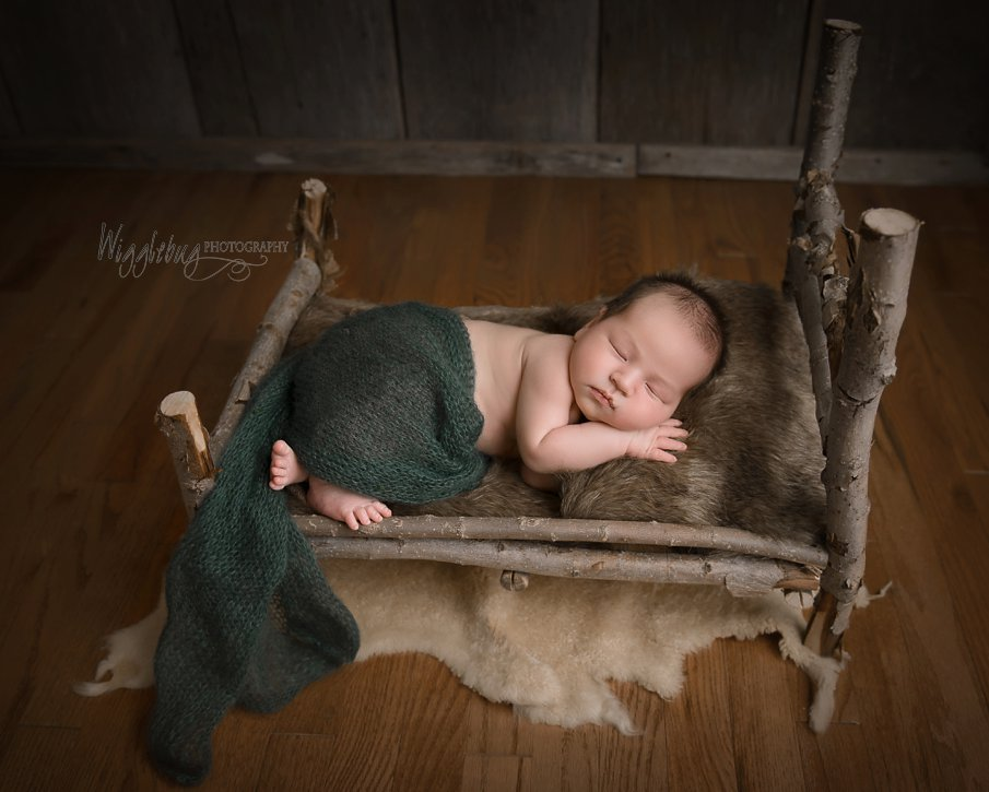 Forest themed boy newborn session from Geneva IL