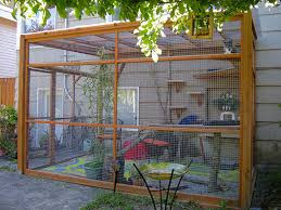 Different Type Of Cat Enclosures Or Catios And Keeping Your Cat Cool In The  Summer