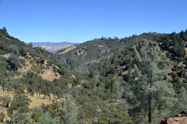 Fir Canyon