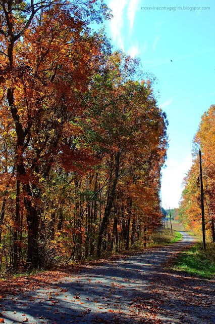 Tennessee Waterfalls, Travel, Hiking, Nature
