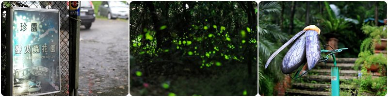 珍園螢火蟲花園