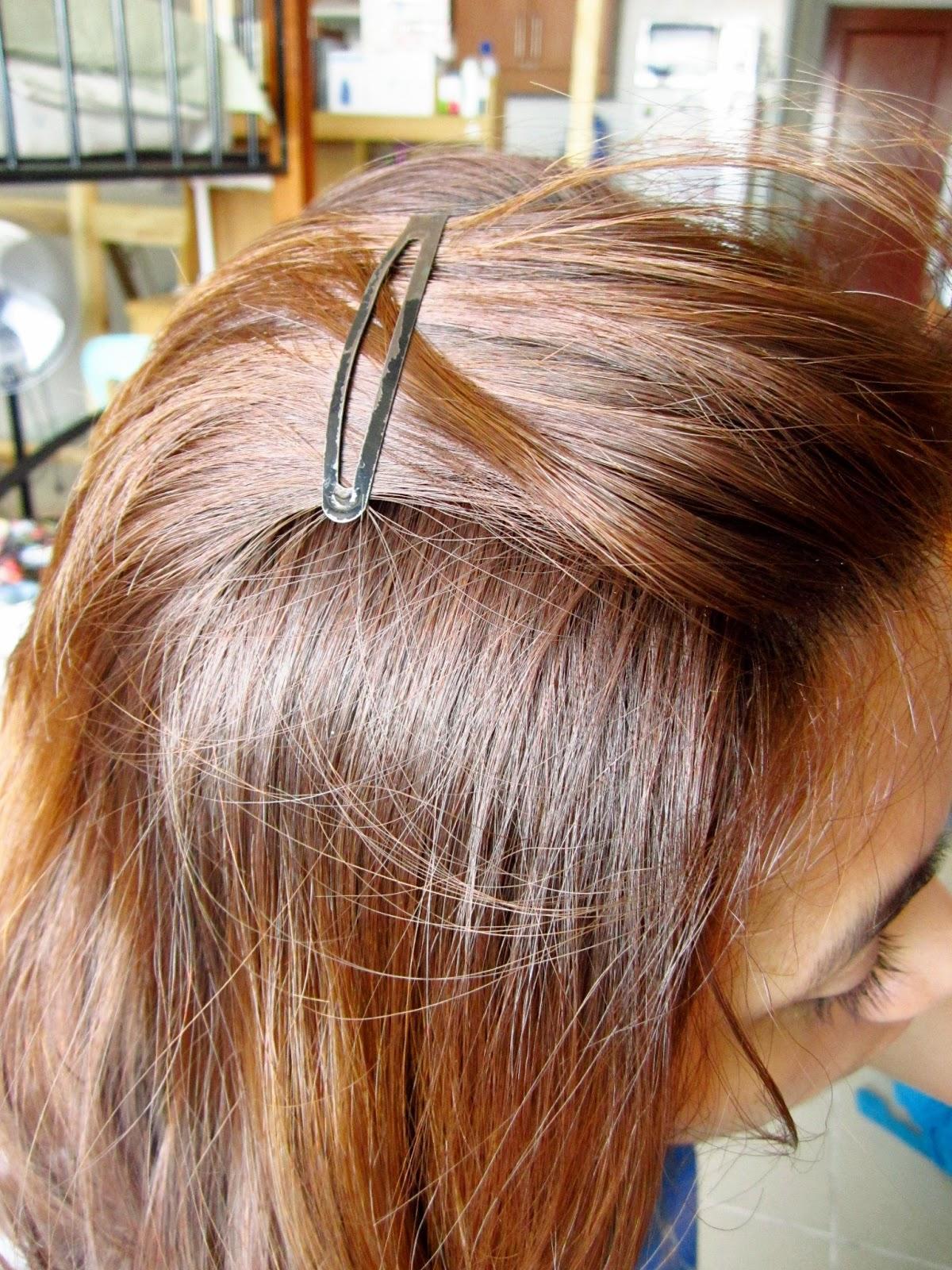 A Shade Of Summer Review Hortaleza Hair Color Light Havana