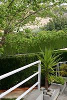chalet en venta masia gaeta borriol jardin7