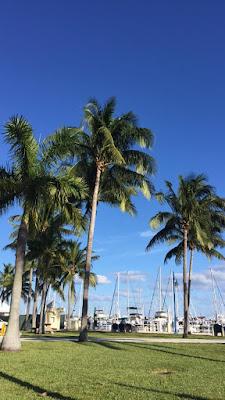 Miami: o que fazer na cidade