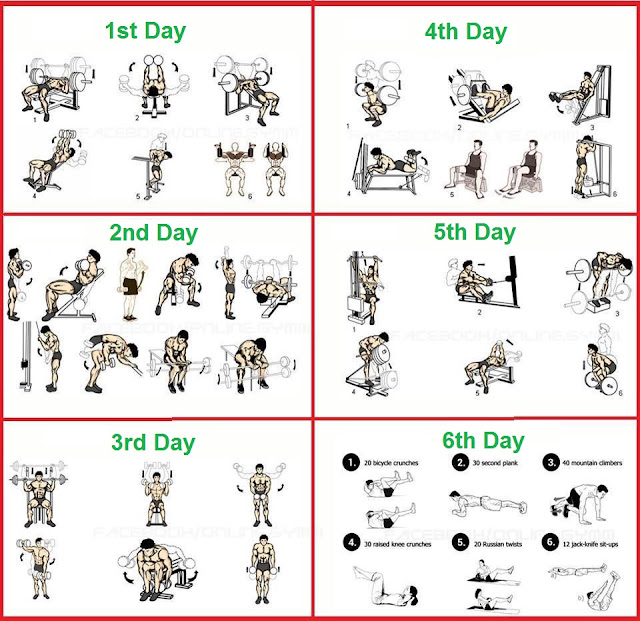 6 Day Bodybuilding Program