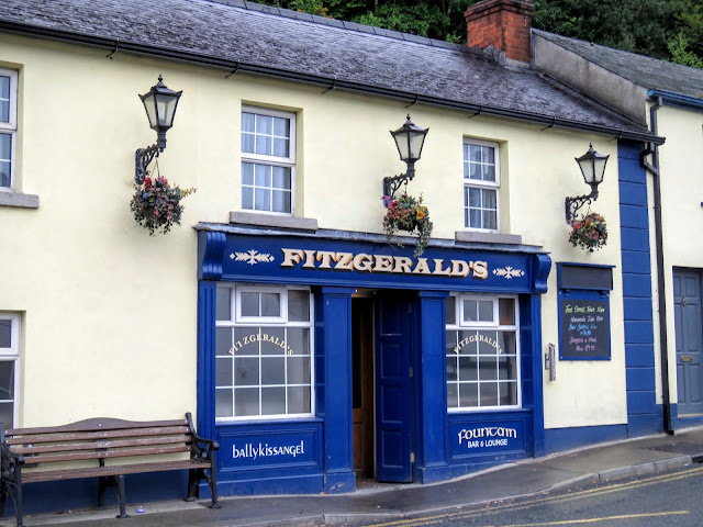 Wicklow Mountains Tour - Fitzgerald's Pub in Avoca Village