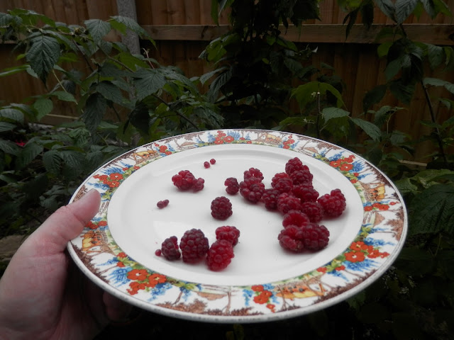 My homegrown harvest, October 2017.  What I grew and ate from my suburban organic permaculture garden UK.  From UK garden blogger secondhandsusie.blogspot.com #homegrownharvest #permaculturegarden #organicgarden #growyourown