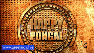 3D Happy Pongal HD wishes in Cenimatic ancient gold material texture look
