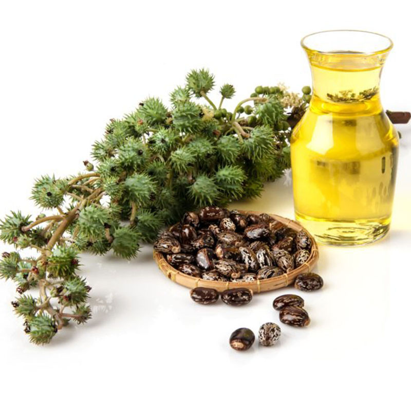 Benefits of Castor Oil Are Mostly for Your Hair and Skin