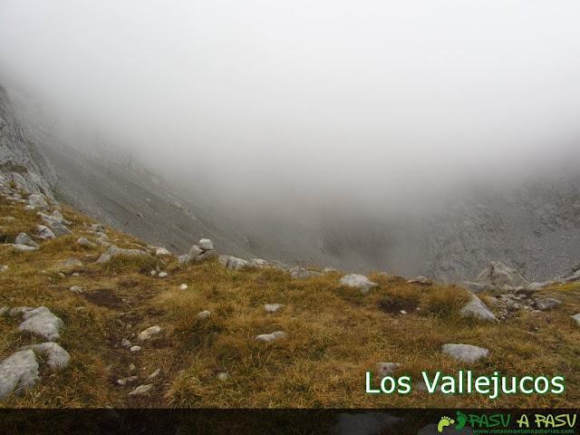 Los Vallejucos