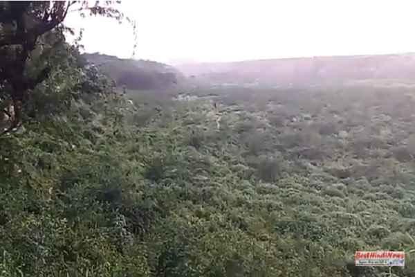 badkhal-lake-image