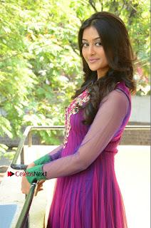 Actress Pooja Jhaveri Latest Stills in Purple Salwar Kameezt at Dwaraka Success Meet  0133.JPG