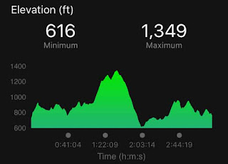buck ridge burn half marathon elevation map