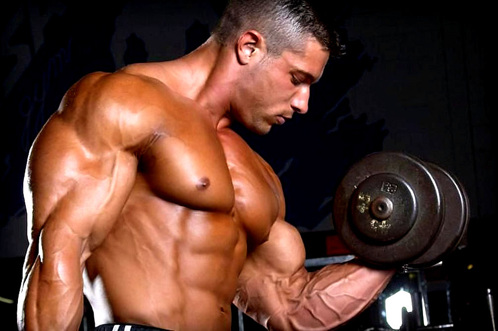 Image result for sustanon 250 results