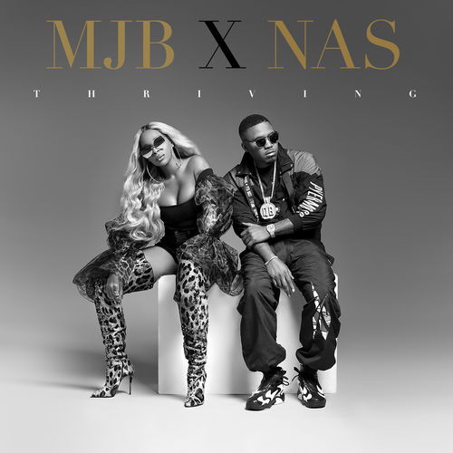 Mary J. Blige - Thriving (feat. Nas) - Single [iTunes Plus AAC M4A]
