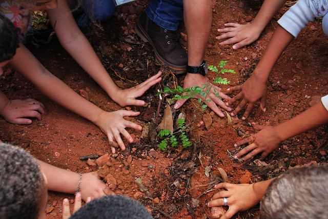 40942916223 77b871e8e4 z - Estudantes do CEF Boa Esperança participam de ações no Parque Três Meninas incentivam preservação ambiental