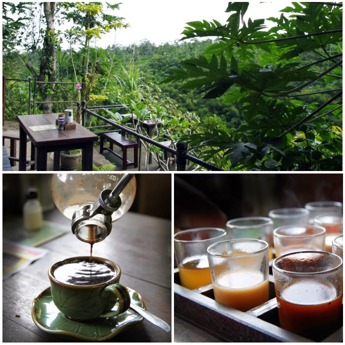 5 Places to Have Luwak Coffee Plantation Tour in Bali ...  Kopi Luwak Coffee Plantations