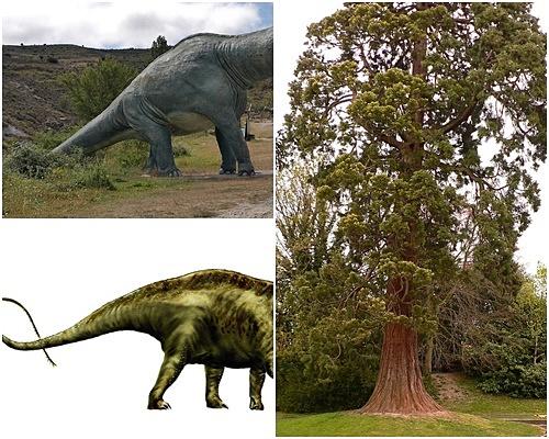 Karbon dating Dinosaur bløtvev