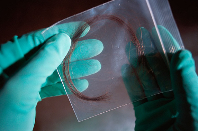 The protein in the hair the better DNA in identifying identities