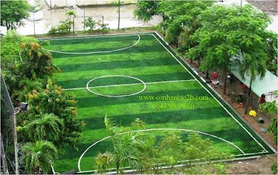 Siêu lợi nhuận khi kinh doanh sân bóng đá cỏ nhân tạo