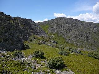 Pico Santotis