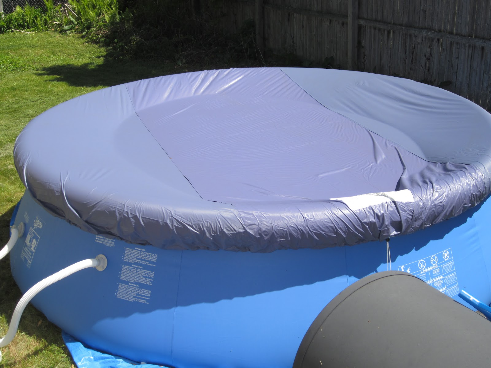 Mama Nibbles: Backyard Ocean Swimming Pool Review