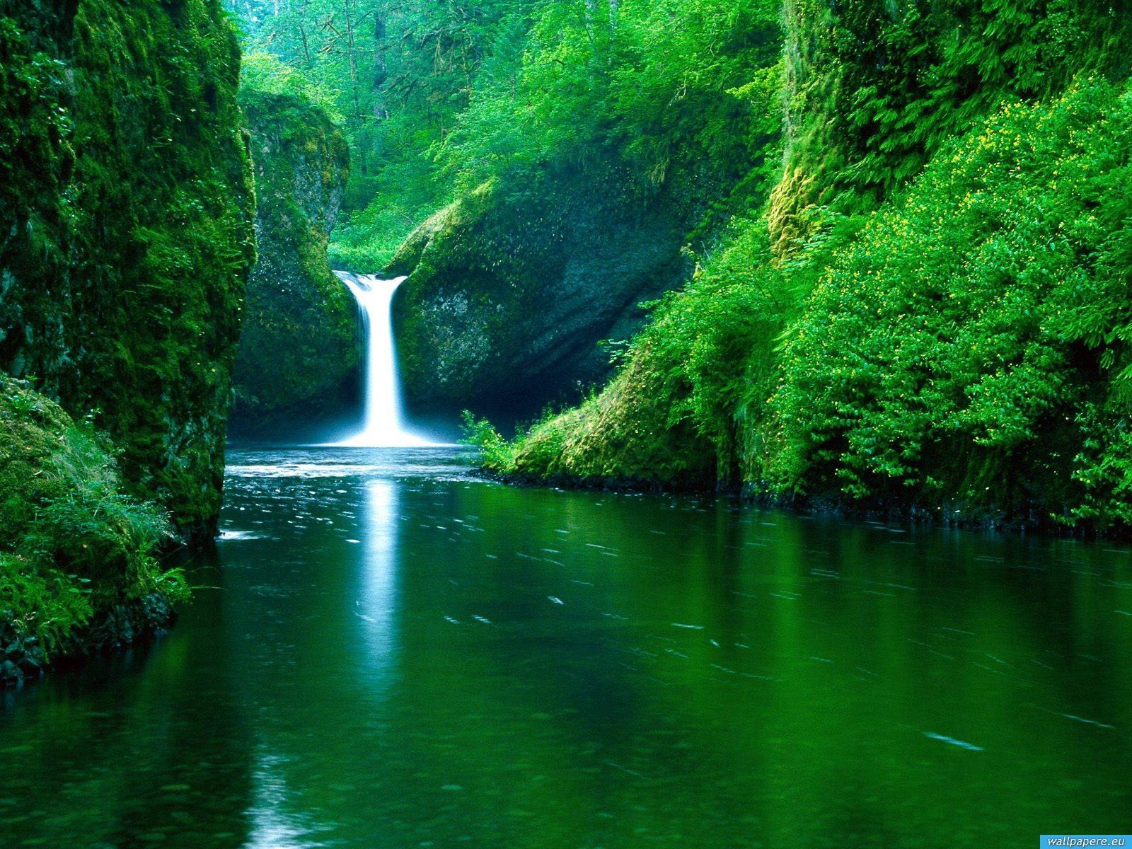 nature wallpapers | nature wallpapers HD | beautifull ...