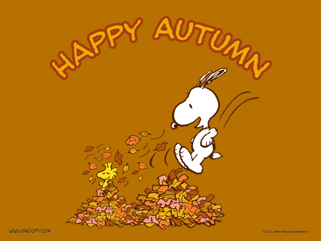 Peanuts Wallpaper Fall What You Make It Happy Fall