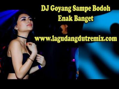 DJ Remix Goyang Sampe Bodoh Enak Banget