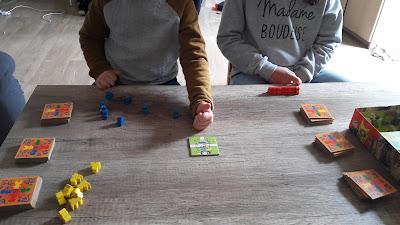 avis test jeu mon premier Carcassonne pour petits