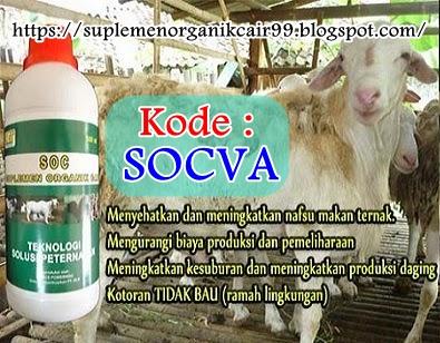 Suplemen Khusus Untuk Menyehatkan Binatang Ternak