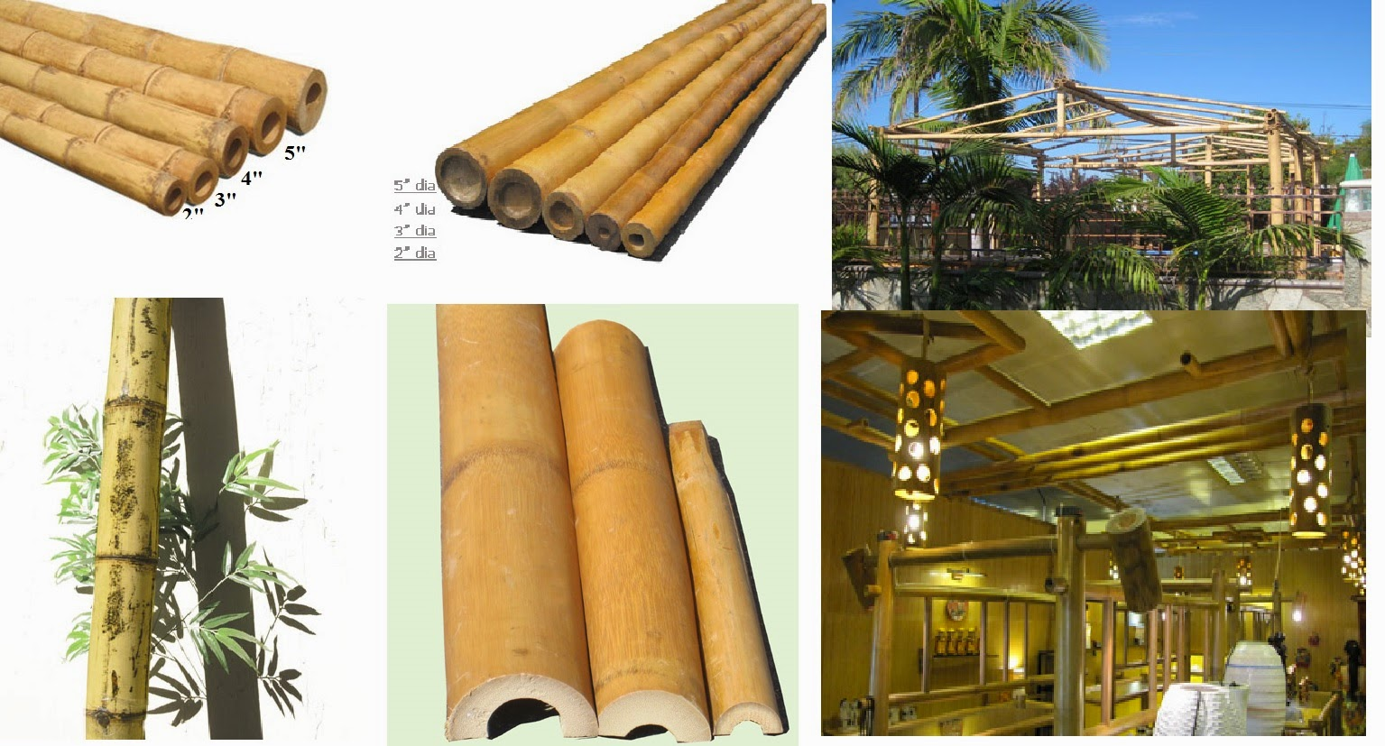 Bamboo and cane Supplies-Wholesale Bamboo Poles-Bamboo Poles