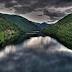 Το «Μέγα Δάσος»:Η τελευταία ζούγκλα της Ευρώπης είναι στην Ελλάδα!!!ΦΟΒΕΡΕΣ ΦΩΤΟ ΚΑΙ ΒΙΝΤΕΟ!!!