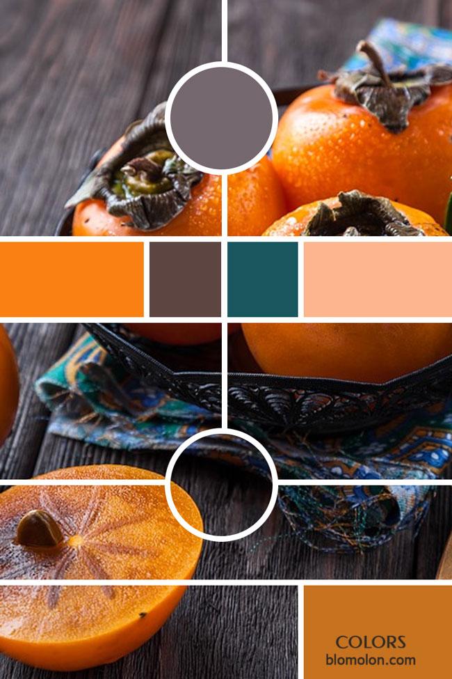 variedad_en_color_moodboards_3
