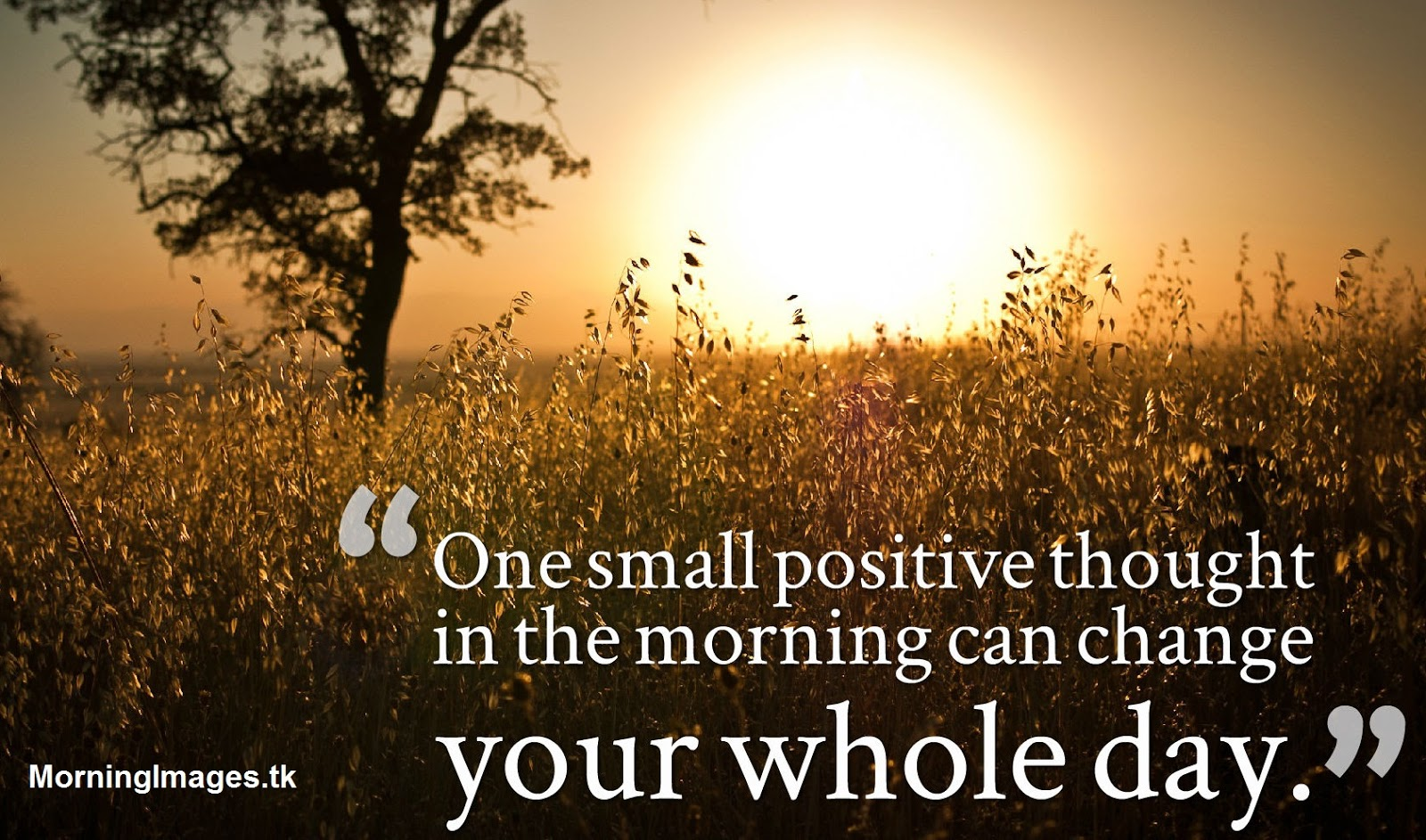 Good Morning Images HD Beautiful Quotes Images