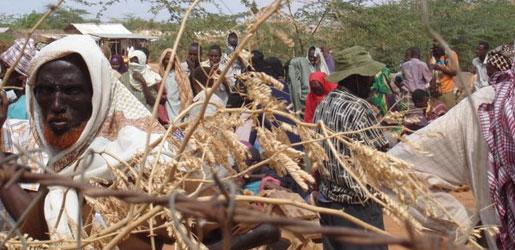 كینیا؛ گهورهترین كهمپی پهنابهران لهجیهان دادهخرێت