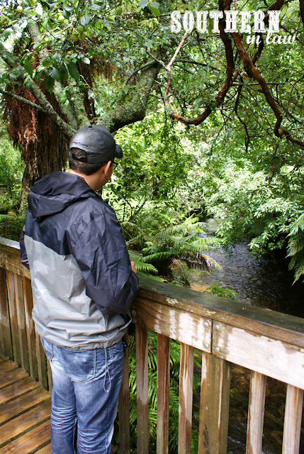 Jesse at Paradise Valley Springs Wildlife Park Rotorua New Zealand