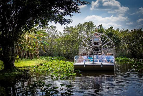 Everglades Park en Miami