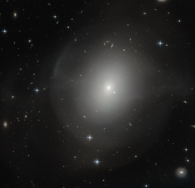 Elliptical Galaxy NGC 2865