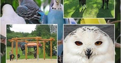 Vogelpark Hessen
