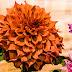 Belgharia Flowers Mela - 2