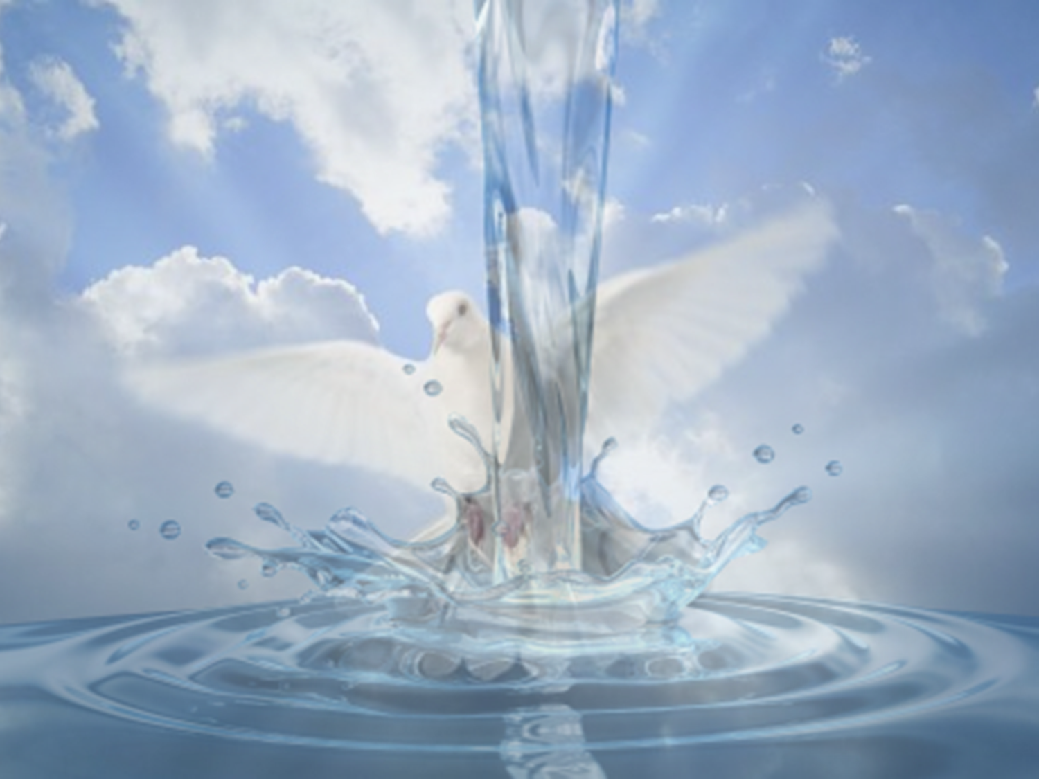 Water Baptism By Immersion