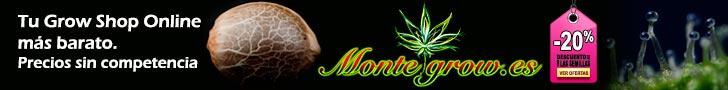 MonteGrow banner
