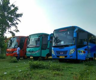Sewa Bus Jogja Tujuan Mojosemi Forest Park Jawa Timur