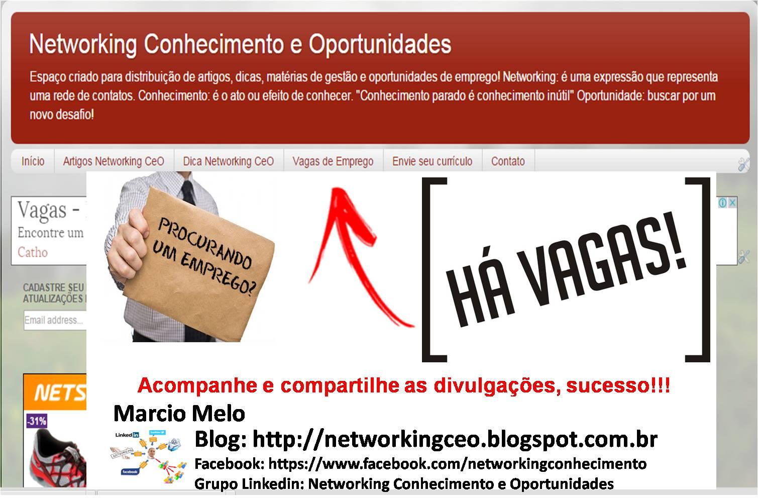 networking conhecimento e oportunidades  vaga  gerente de