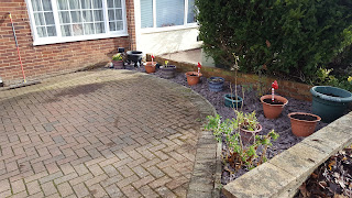 Pippa D's Front Garden now has Kerb appeal