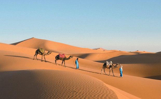 Quando você olha para a grande extensão do deserto do Saara hoje, parece que tem estado em pé forte por uma eternidade