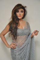 Actress Sony Charistha Latest Pos in Silver Saree at Black Money Movie Audio Launch  0051.jpg